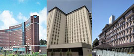 Other Hotels Near Narita Airport